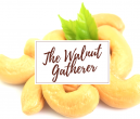 The Walnut Gatherer